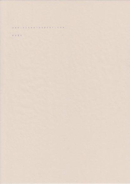 leicht vergilbtes Durchschlagpapier PA09